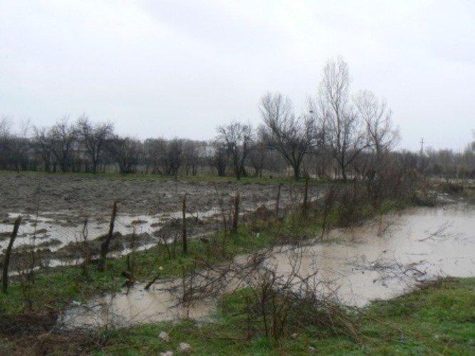 Case inundate și drumuri afectate în urma ploilor căzute în ultimele 12 ore