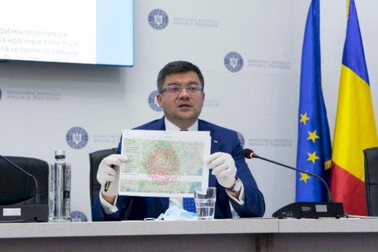 Costel Alexe: În 2020, niciun transport de buștean nu a fost exportat din România pe calea ferată