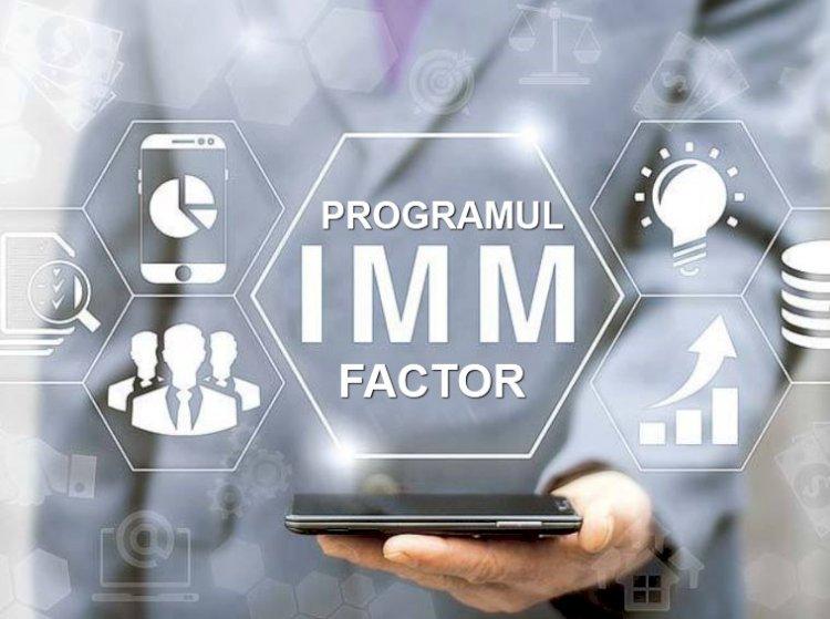 Guvernul a aprobat Programul IMM Factor. Garanţiile de stat pot ajunge până la 5 milioane de lei pe beneficiar