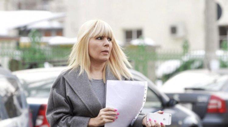 DNA: 12 ani de închisoare pentru Elena Udrea şi 15 ani pentru Ioana Băsescu