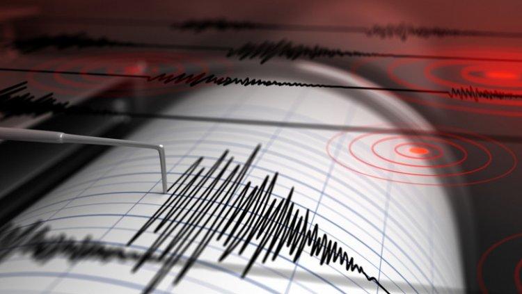Cutremur cu magnitudinea de 7,2 în nordul Japoniei. Alertă de tsunami