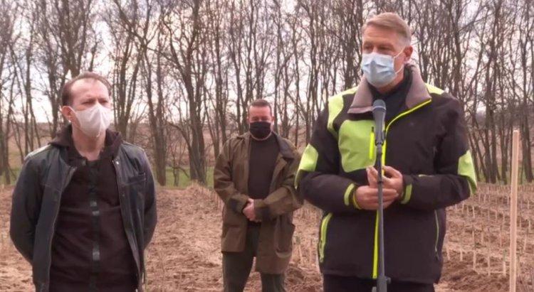 Iohannis: Am decis să alocăm 1,5 miliarde euro pentru împăduriri. Cu toții ne dorim un mediu curat.