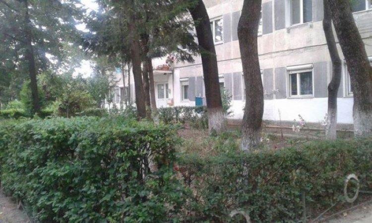 Asociaţiile de proprietari, obligate să îngrijească spaţiile verzi din jurul blocului