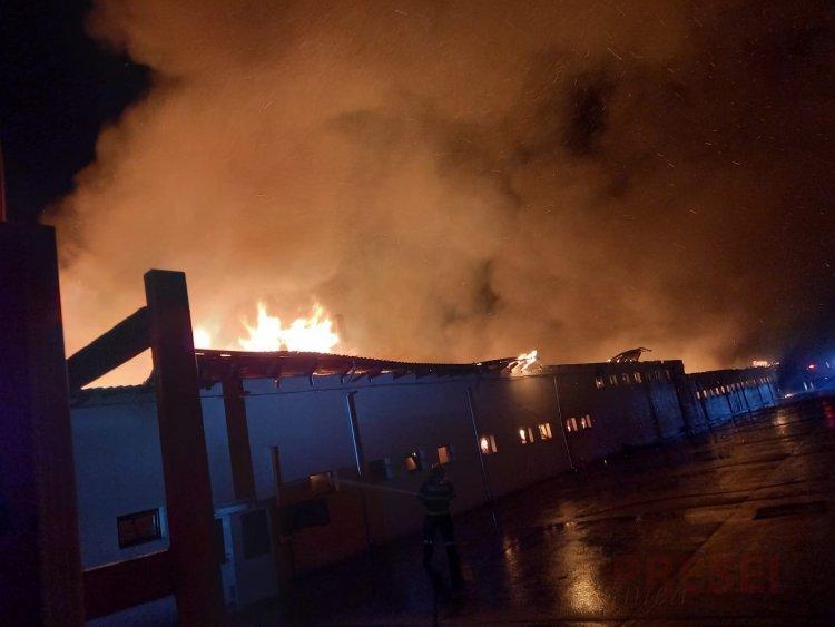 Incendiu la fabrica de pâine din Satu Nou, județul Constanța